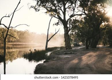 Murrumbidgee river on a golden evening