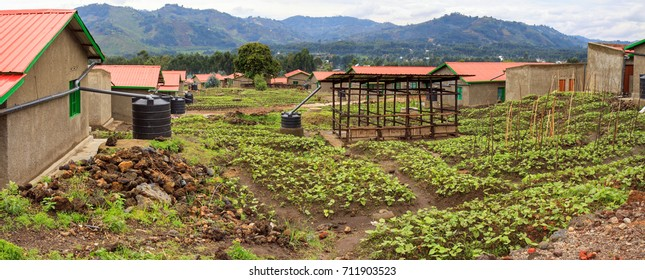 MUSANZE, RWANDA - OCTOBER 5, 2016: Model resettlement village to accommodate people from areas prone to floods and landslides. Houses have rainwater reservoirs, a biogas pit, and a home garden.