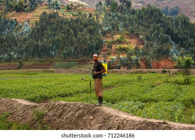Spraying Agriculture Stock Photos, Images & Photography | Shutterstock