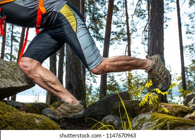Muscled legs of the trail running athlete crossing rocky terrain in the forest