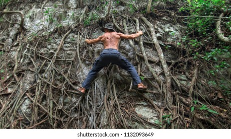 Muscular back of shirtless adventure man climbing tree roots on cliff in tropical jungle