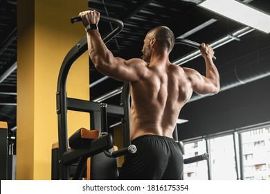 Muscular bodybuilder doing pull-ups during his workout in the gym