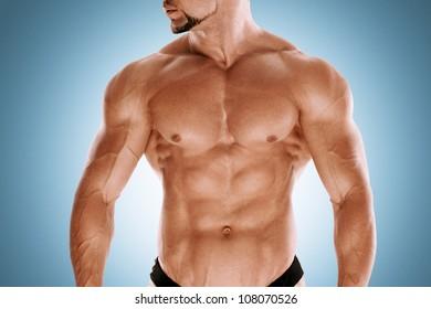 Muscular bodybuilders torso