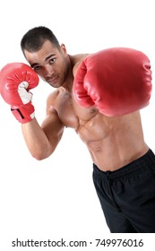 Muscular boxer in front of white background