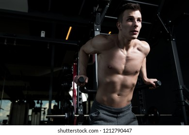 Muscular Fitness Bodybuilder Doing Heavy Weight Exercise For Triceps And Chest on Parallel Bars In The Gym