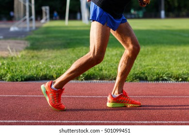 Muscular legs of men in shorts and sports shoes