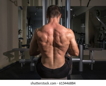 Muscular male back while doing exercises in the gym