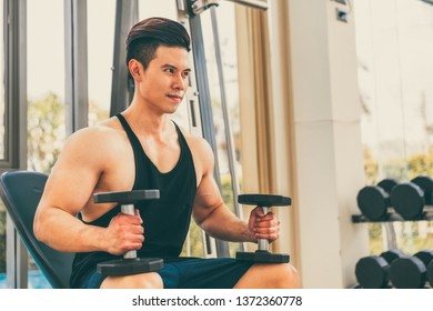 Muscular man bodybuilder in fitness gym training with dumbbells. Healthy lifestyle and bodybuilding concept.