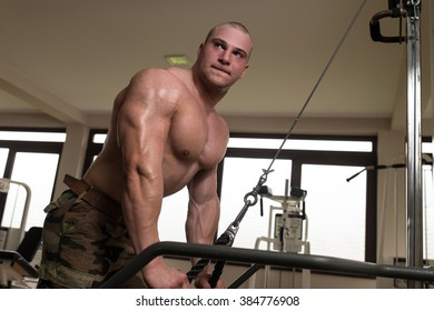 Muscular Man Doing Heavy Weight Exercise For Triceps On Machine In Gym