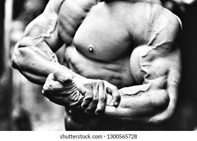 Muscular man torso - close up
