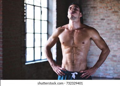 A muscular and sweaty man is training at the gym by lifting the gym weights to strengthen his muscles and breathe very fatigued for his tough workout. Concept of: workout, workout, power, fitness