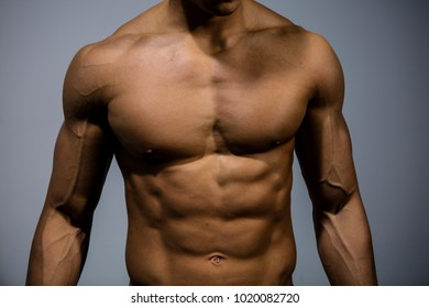 The muscular torso of a fitness model. Front facing.