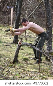 muscular woodcutter in a forest