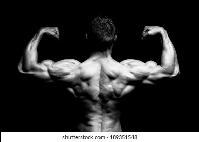 The musculare male back on black background.