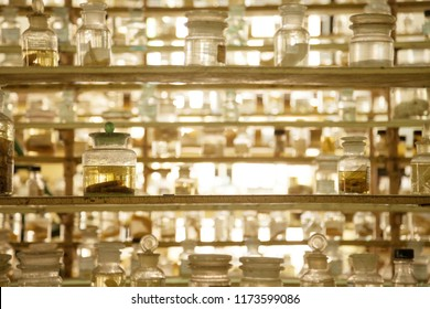 Museum shelves with specimens preserved wet in glass jars of formalin. Jarred animals in a scientific collection of biological samples