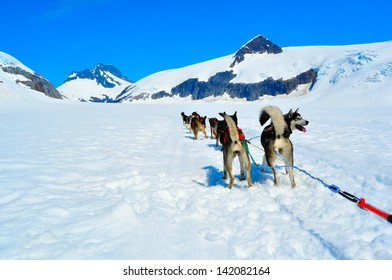 Musher Camp on Top of Mendenhall Glacier in Juneau Ice Field
