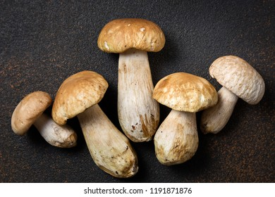 Mushroom Boletus on dark table. Autumn cep Mushrooms. Ceps Boletus edulis on rustic background close up top view. Gourmet food. Cooking mushroom