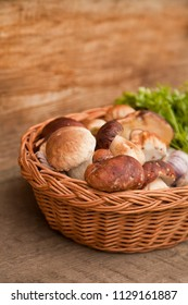 Mushroom Boletus over Wooden Background. Autumn Cep Mushrooms.Cooking delicious organic mushroom.