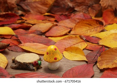 Mushroom and fallen leaves on wooden table.