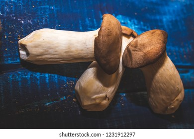 Mushroom Flat lay on blue rustic wood edible mushrooms healthy eating and natural organic mushrooms ingredient photography with room for copy