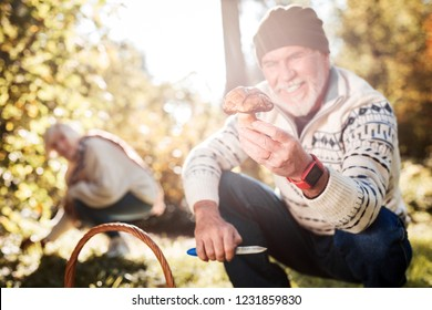 Mushroom hunt. Forest mushroom being held by a positive cheerful man being in the forest