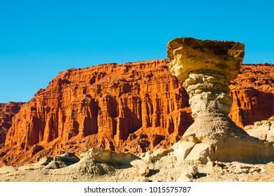 The Mushroom - Ischigualasto Provincial Park - Argentina