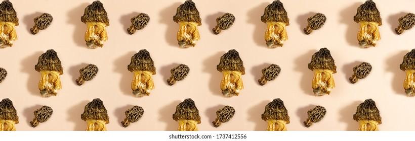 mushroom pattern. Seamless background of wild morel mushroom. Vegetarian concept. Food background
