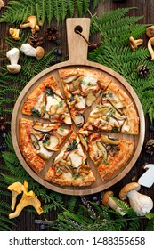 Mushroom pizza, pizza with addition of edible forest mushrooms (porcini mushrooms, chanterelle) and mozzarella cheese and herbs on a wooden rustic table in a forest arrangement, top view.