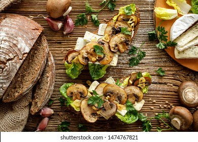Mushroom sandwich, open faced sandwich with sourdough bread with addition of brown sliced mushrooms, camembert cheese, lettuce and fresh parsley on a rustic wooden background, top view