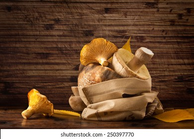 Mushroom selection on wooden background