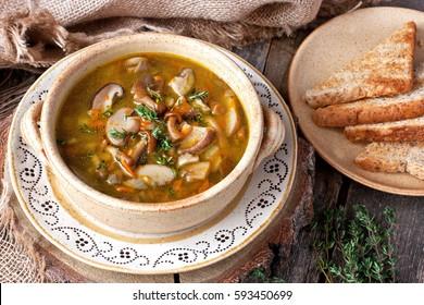 Mushroom soup in ceramic  bowl