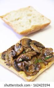 Mushroom Swiss Panini Sandwich