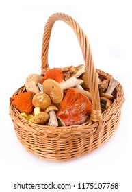 mushroom wicker basket foraging over white background