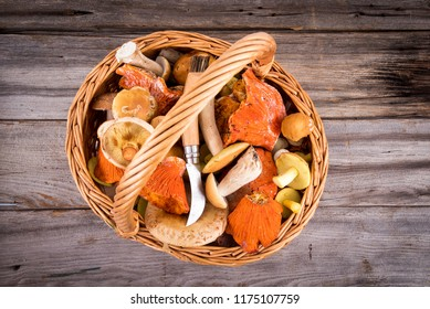 mushroom wicker basket foraging wood background