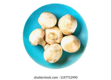 Mushrooms Champignon mushrooms isolated on white background. Top view. Champignons in a blue plate. Champignon mushroom isolate.