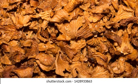 Mushrooms chanterelles soaked in water.Background of forest mushrooms chanterelles.