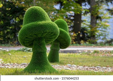 mushrooms created from bushes at green animals. Topiary gardens