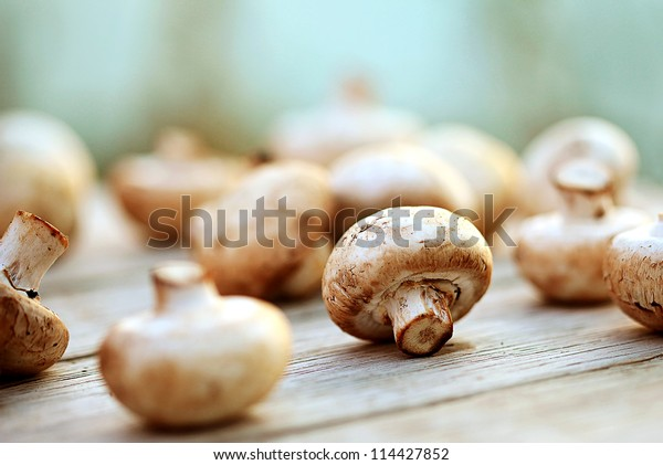 Mushrooms on a wooden table. Macro image.