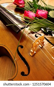 Music background with cello and rose flowers in warm colors