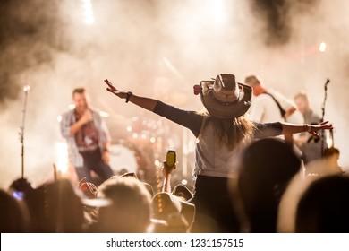 Music festival crowd excitement - Shutterstock ID 1231157515