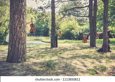 Music and nature concept. Female musical quartet with string instruments, one cello and three violins, hiding behind the trees, prepares to play in nature next to the river.