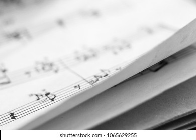 Music notes, learning book for background, close