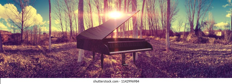 Music piano concept and nature.Surreal dreamscape forest and sunset and black grand piano