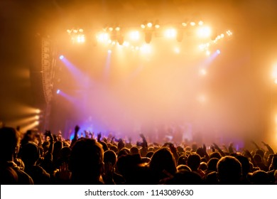 Musical concert. Music festival. People in the concert hall at the disco . Singer in front of the audience. Fans at the concert. Blurred image / blurred photo.