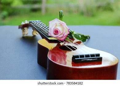 A musical instrument Ukelele with a Rose, selective focus
