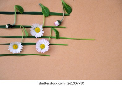 musical notes of flowers