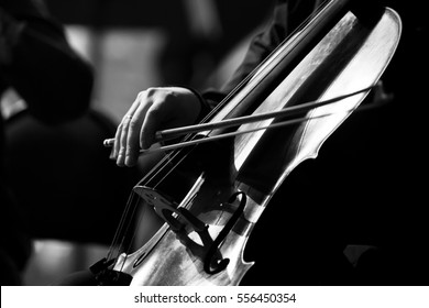 Musician hand playing the cello in black and white