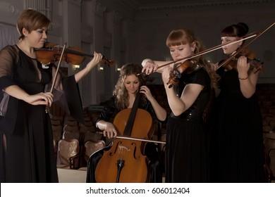 Musician play violin on dark background