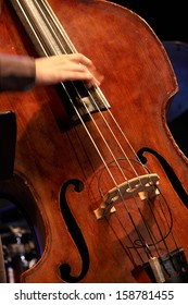 musician playing double bass with your fingers, detail