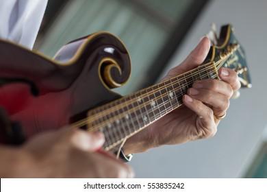 musician playing a mandolin - Shutterstock ID 553835242